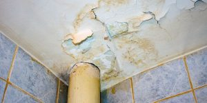 Water Damage Cleanup Steilacoom WA